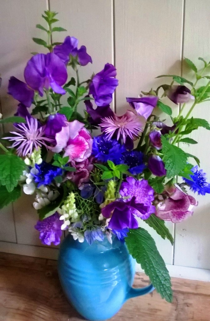 Cutting garden flowers in June