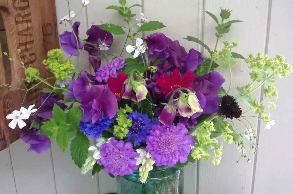Annuals from the cutting garden