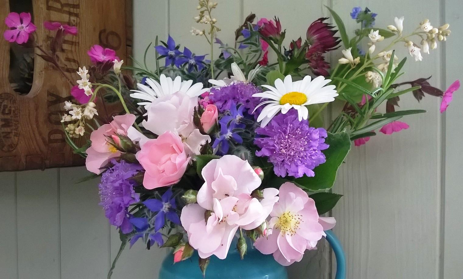 native flowers Archives Home Flower Garden