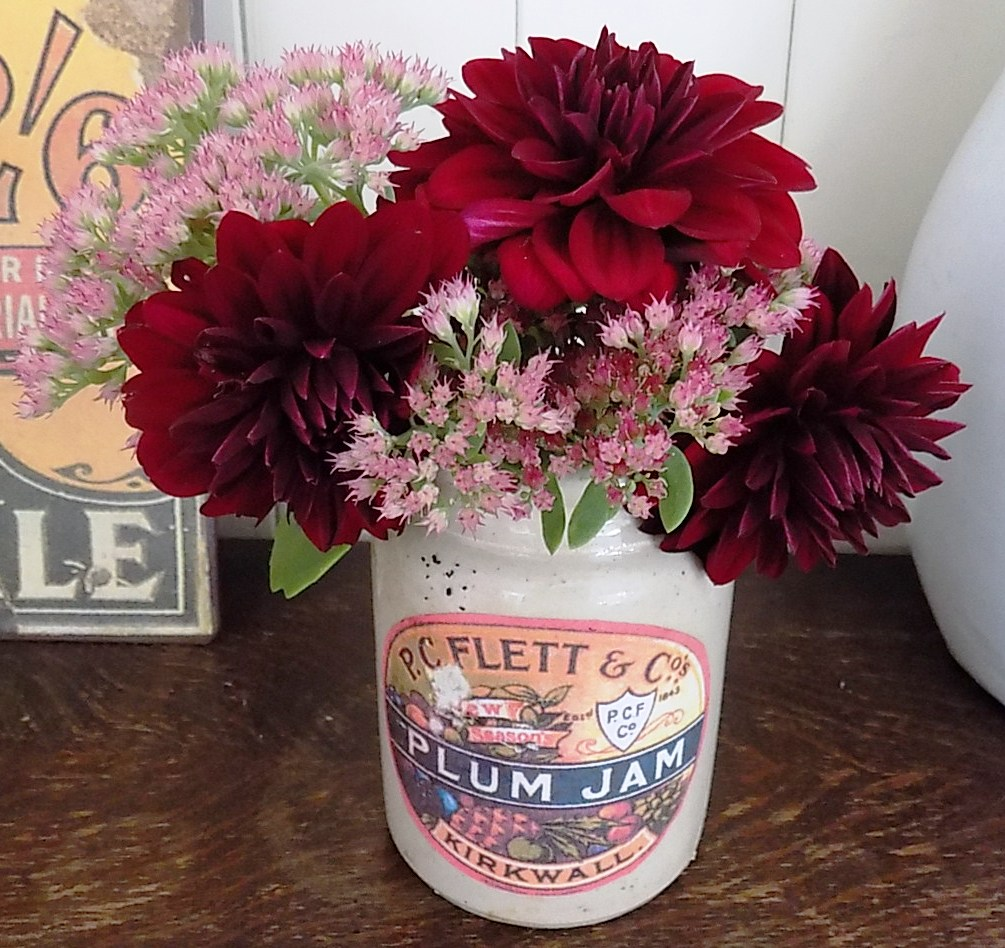 Dahlias and Sedum