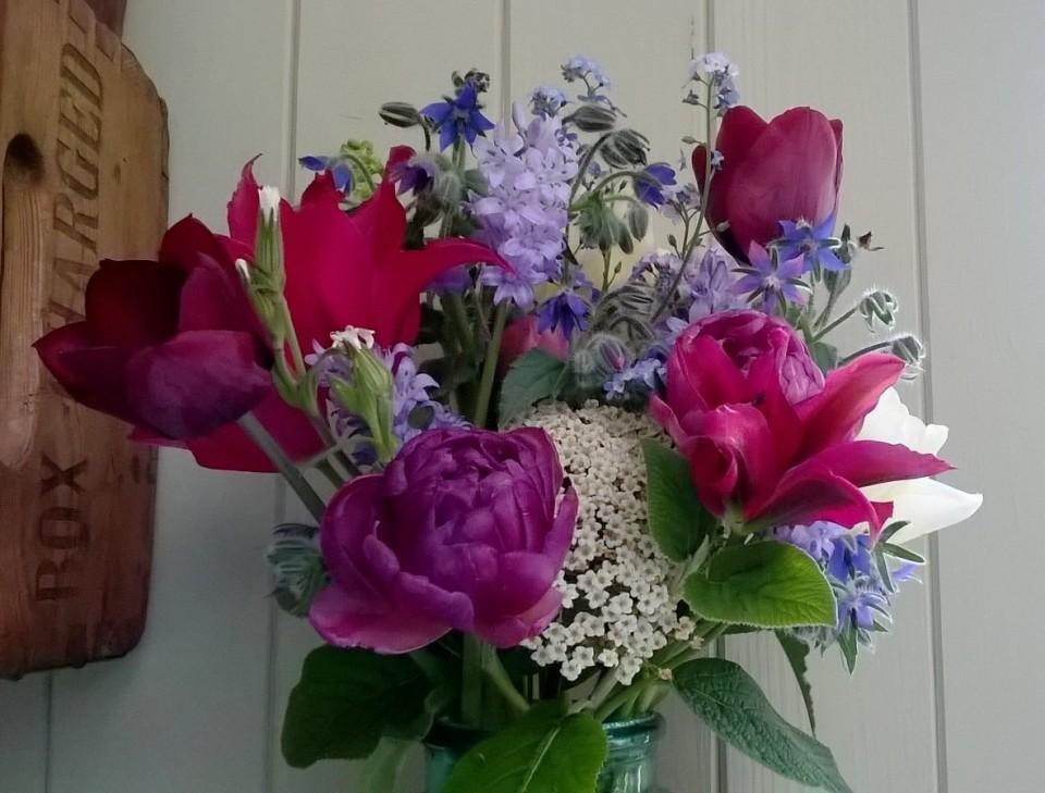 Tulips, Vib lantana, Borage