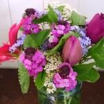 Tulips and Vib lantana April