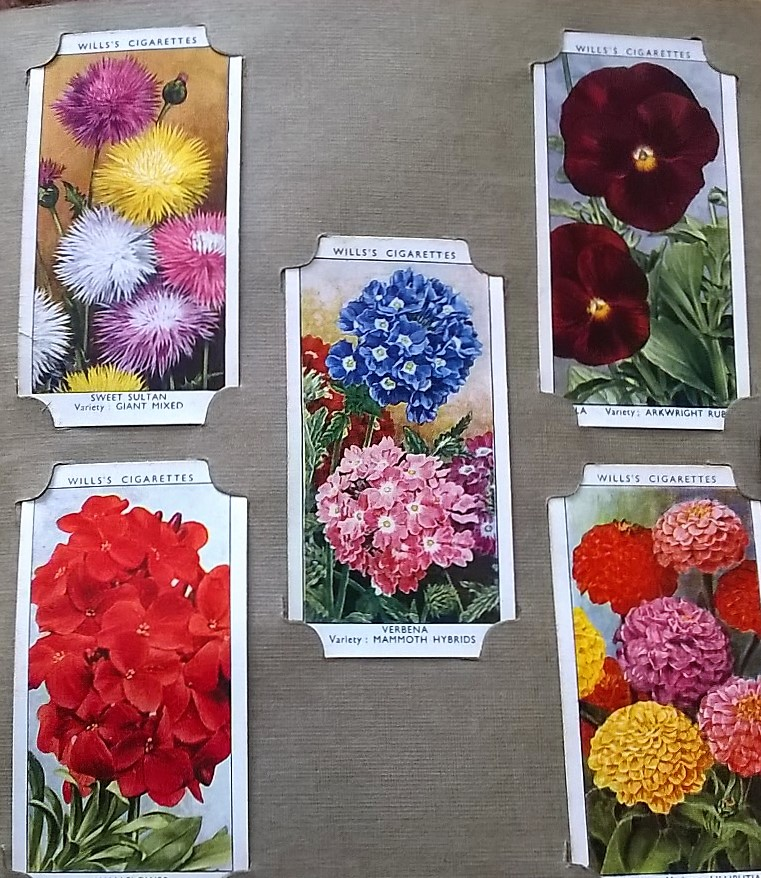 How To Guides Archives Home Flower Garden