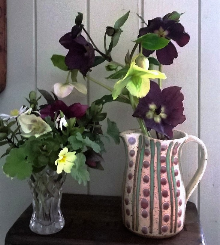 Hellebores and Spring flowers