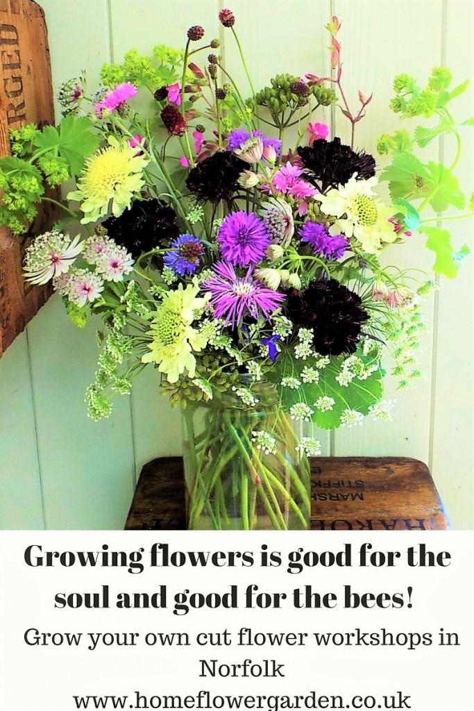Growing flowers is good for the soul and good for the bees!
