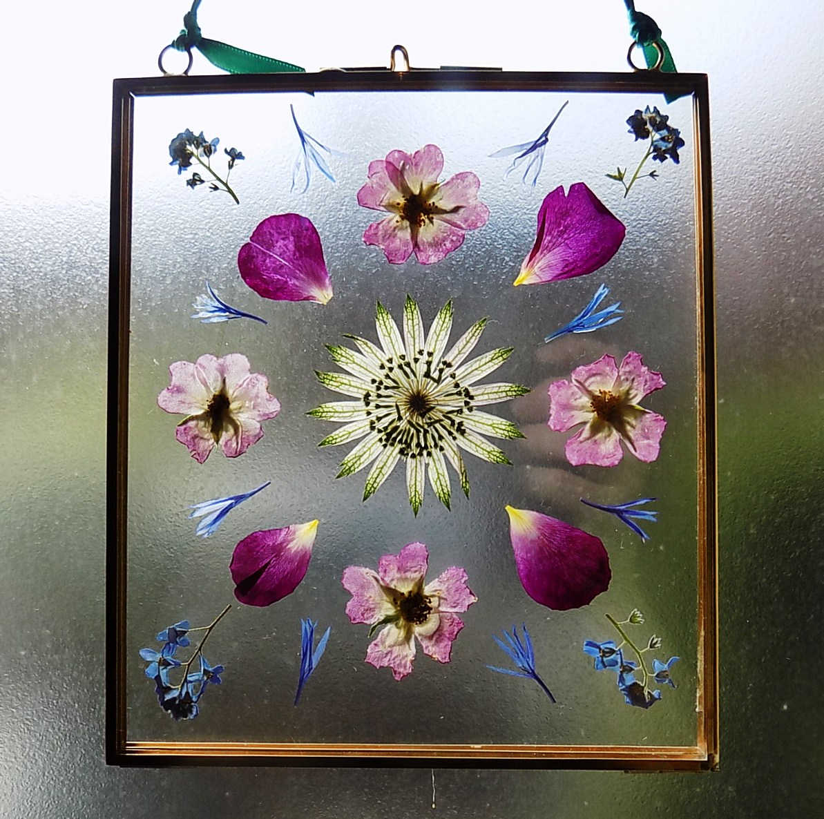 Pressed Flowers Archives Home Flower Garden