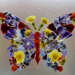Pressed flower butterfly