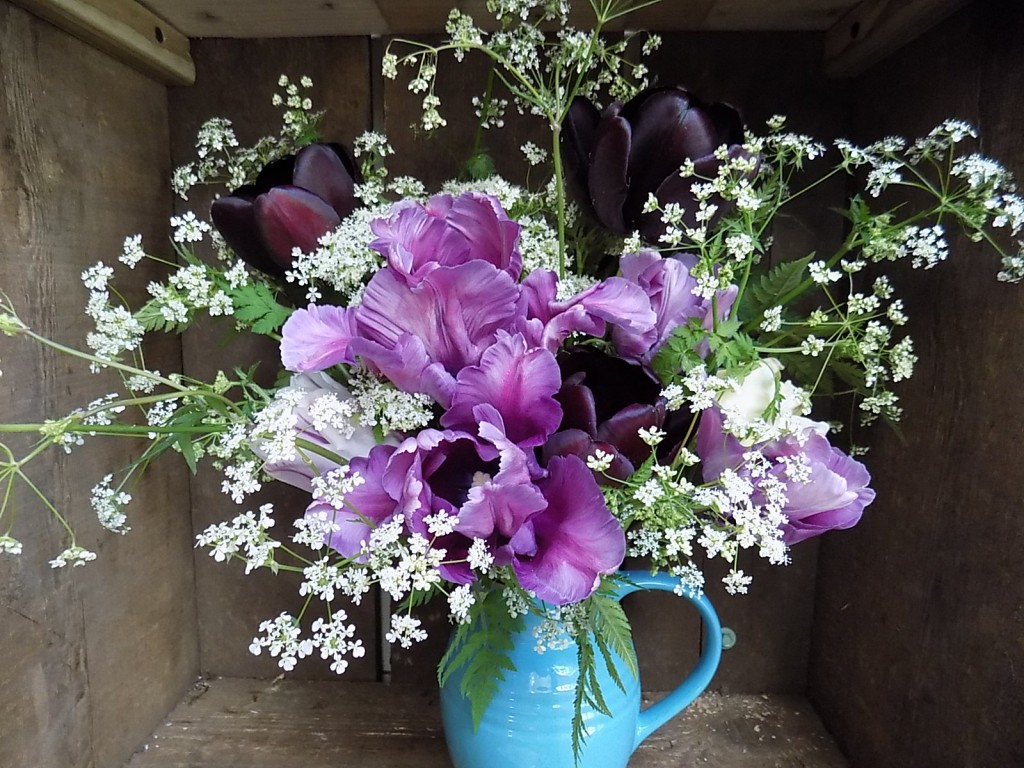 Homegrown tulips with cow parsley
