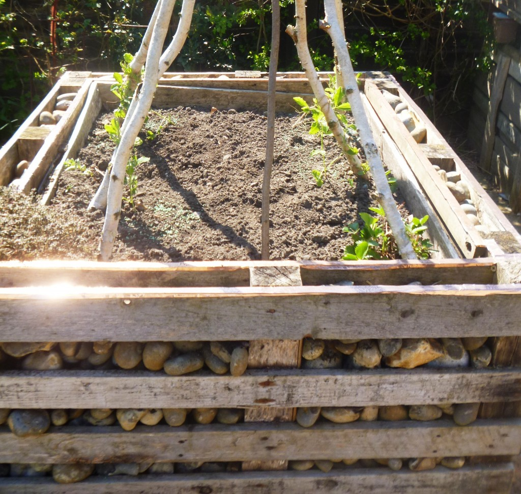 Raised bed with insect shelter
