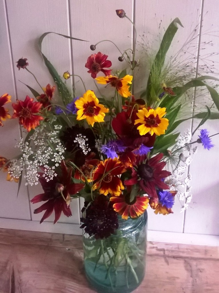 Autumn cut flowers
