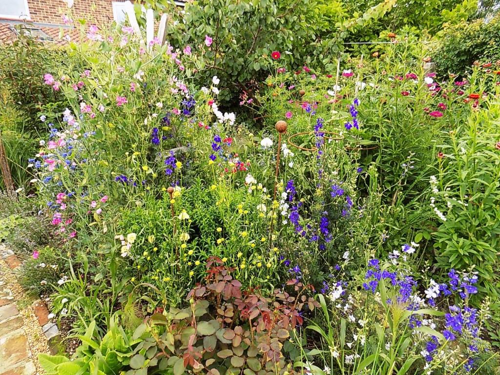 Cutting garden in July