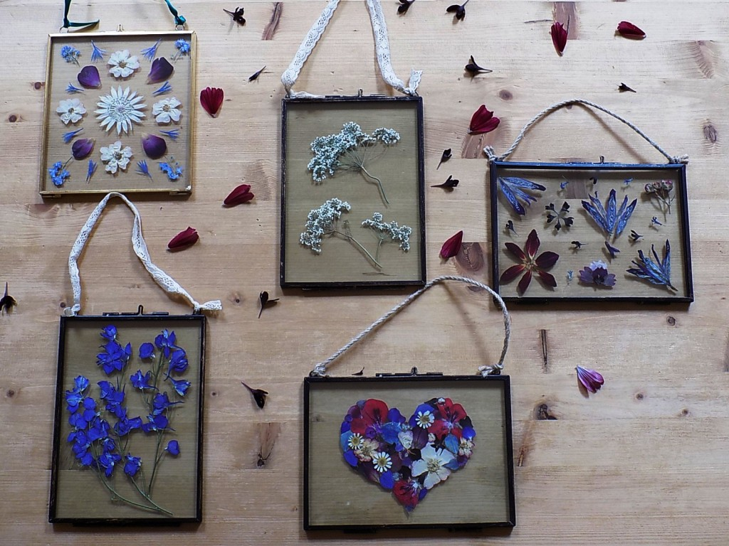 Pressed flower pictures