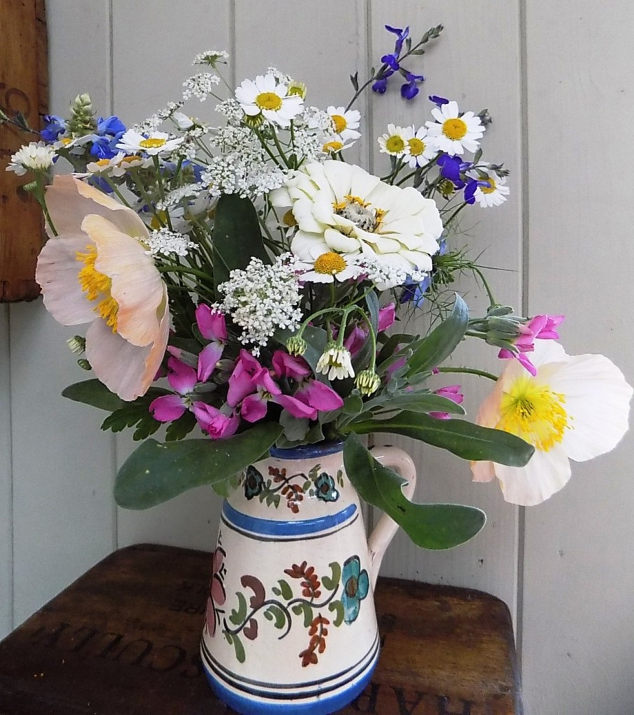 Feverfew, Salvia, Stocks and Poppies
