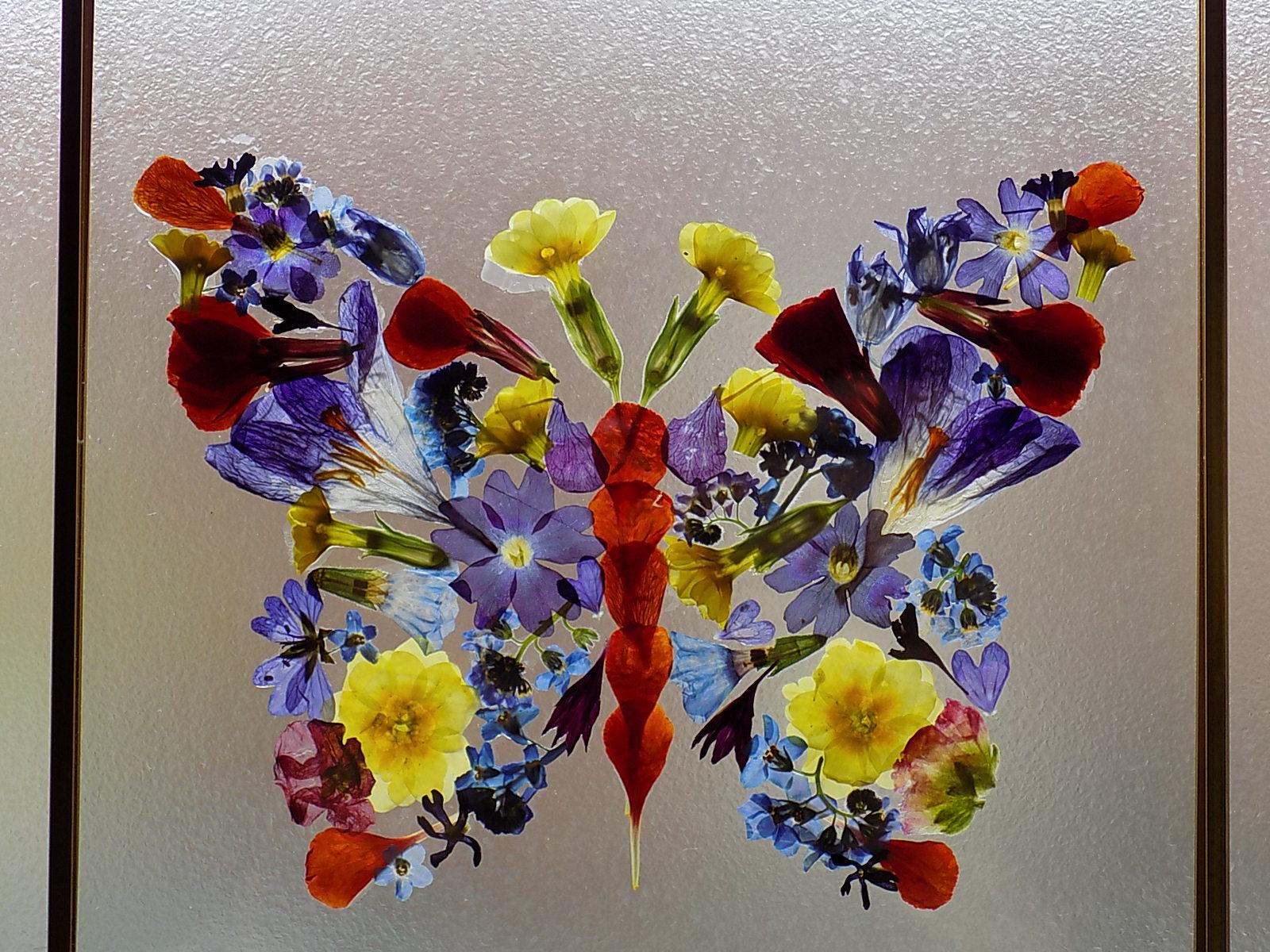 Pressed flower butterfly