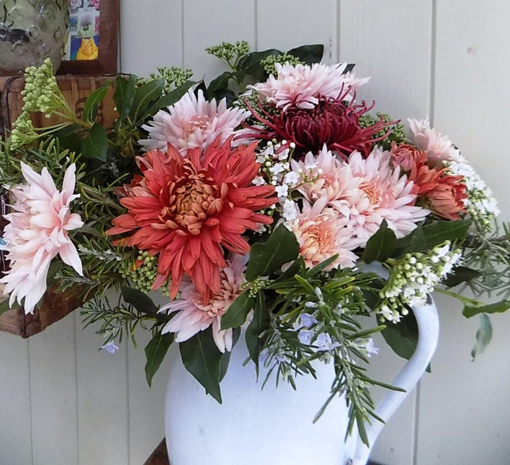 Chrysanthemums in November