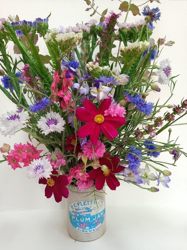 Colourful annuals